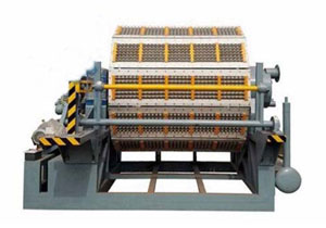 5000-6000pcs egg tray machine