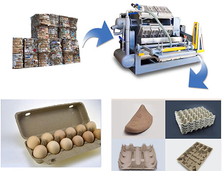 make waste into pulp molding products