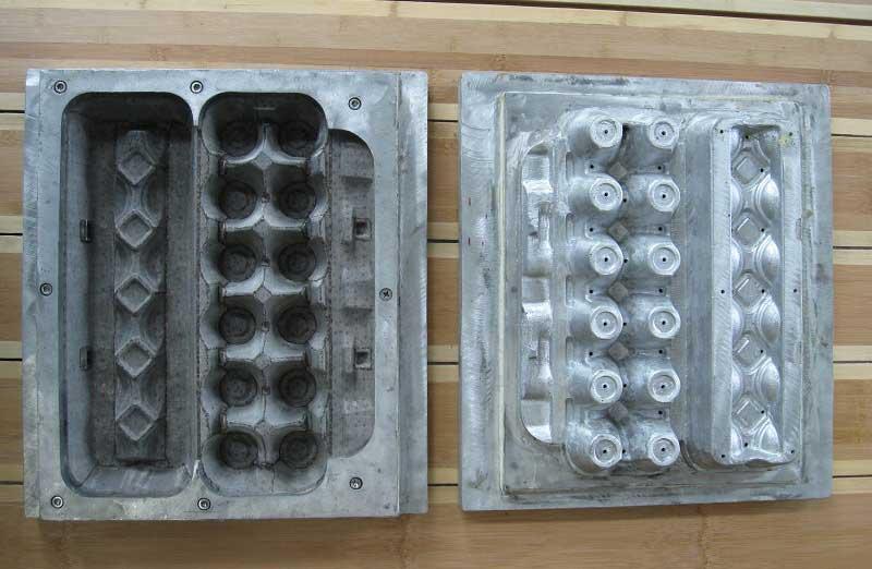 egg cartons molds