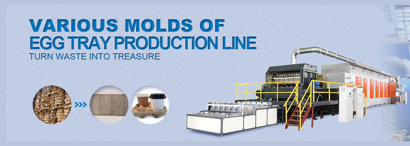 paper molding products